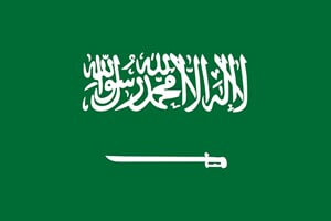 Mostly Performed Aesthetic Operations in Saudi Arabia