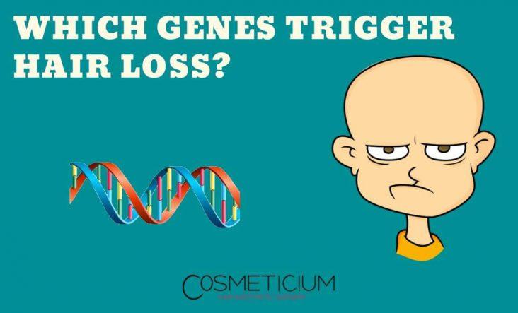Genes Effects Hair Loss