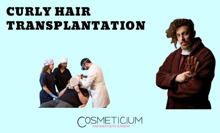 Curly Hair Transplant